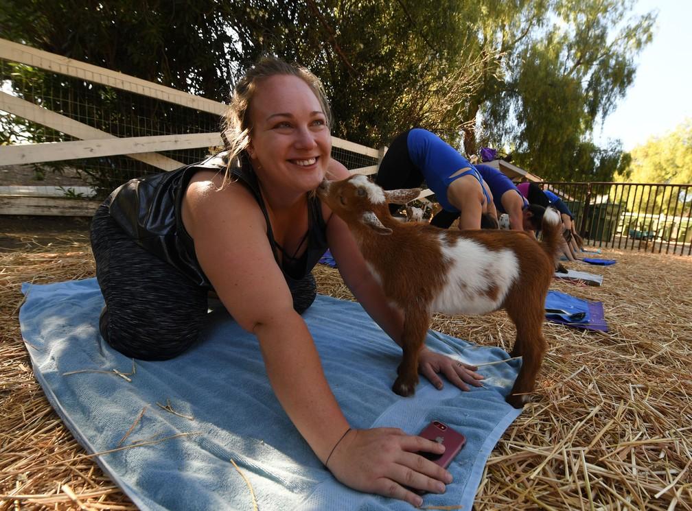 Praticante de ioga interage com bebê-cabra durante aula (Foto: Mark Ralston/AFP)