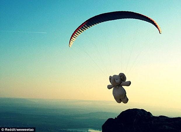 Elefante de pelúcia voando de paraquedas (Foto: Reprodução)