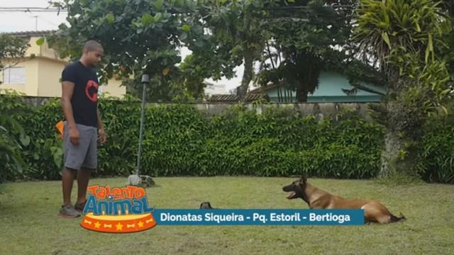 Vídeo enviado por Dionatas Siqueira (Foto: Reprodução)