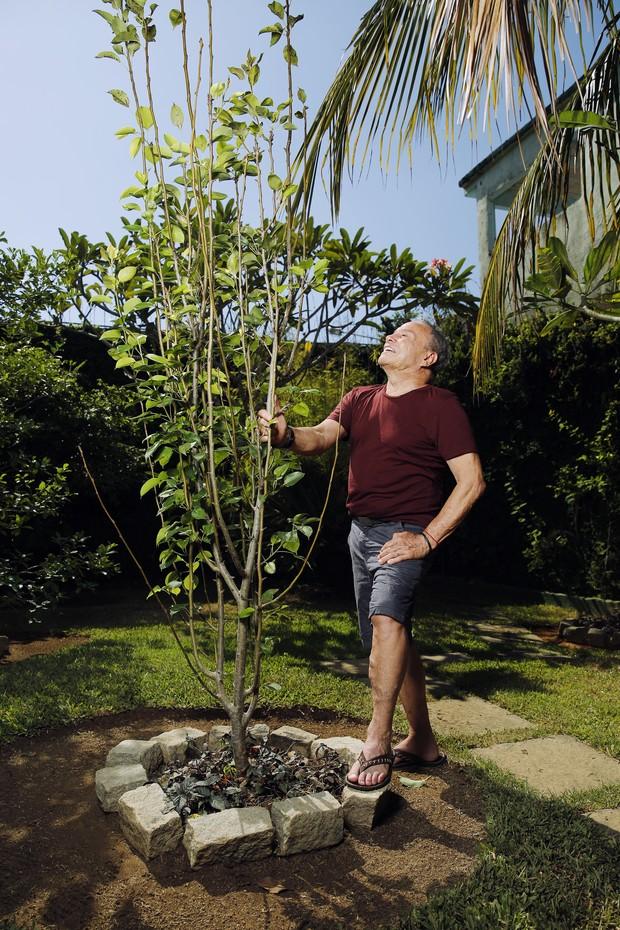 Stênio Garcia e a árvore em homenagem a Walmor Chagas (Foto: Marcos Serra Lima/EGO)