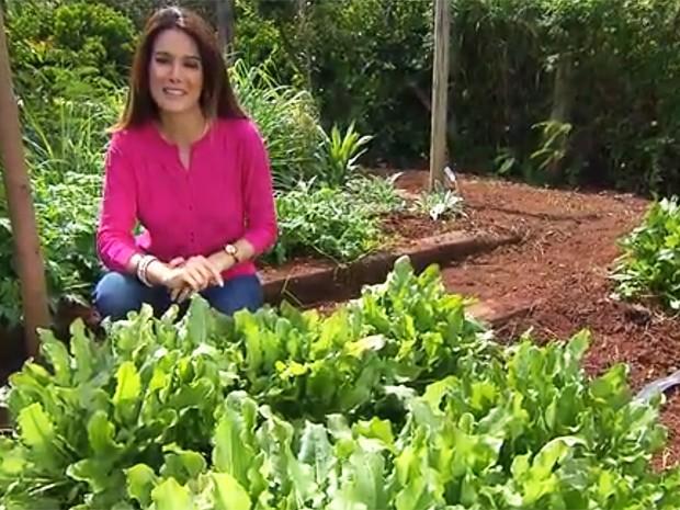 Veja todos os vídeos do 'Segredos de Antigamente' (Reprodução/TV Globo)