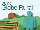 Envie fotos e vdeos 