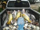 Em 5 meses, polícia apreende 2,8 toneladas de pescado irregular em MT