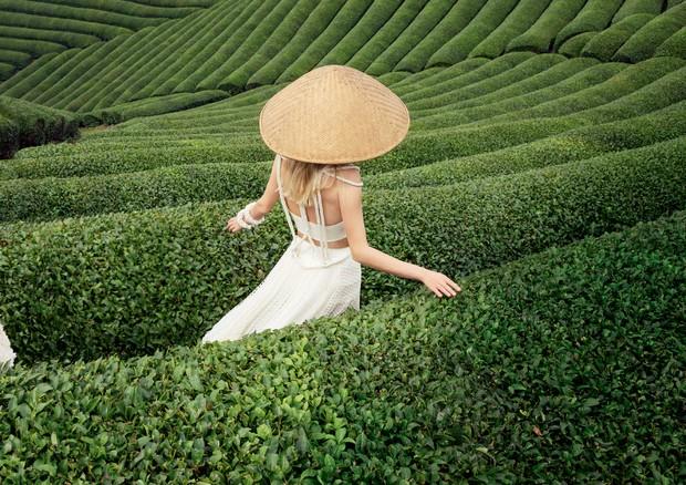 Com ação termogênica e ANTIOXIDANTE e mais poderoso que o chá-verde, o matcha é a bebida mais CULTUADA do momento (Foto:  Tinko Czetwertynski / Arquivo Vogue e Thinkstock)