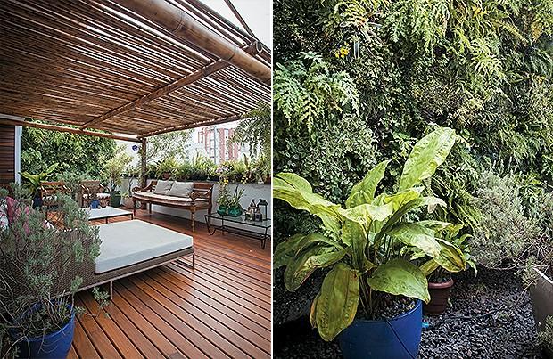 jardim vertical bambu:Meu querido jardim – Casa e Jardim