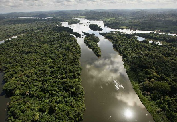 Amazônia (Foto: Getty Images)