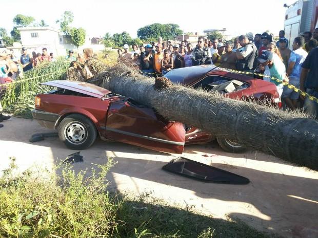 Carro ficou completamente destruído após acidente (Foto: Divulgação/Corpo de Bombeiros)