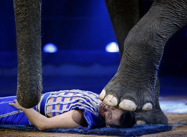 Joy Gartner fica com a cabeça embaixo de pé de elefante durante apresentação em Mônaco (Foto: Eric Gaillard/Reuters)