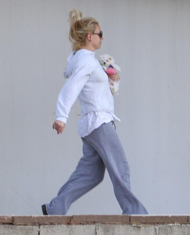 Britney Spears leva um de seus animais de estimação a um veterinário na Califórnia, nos Estados Unidos (Foto: X17/ Agência)