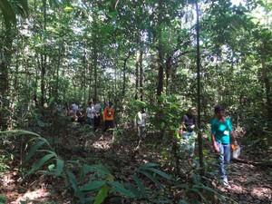 trilha do macaco (Foto: Izabella Bemerguy / G1)