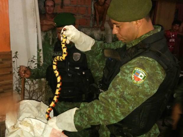 Morador encontrou cobra na garagem de casa (Foto: Divulgação/Batalhão Ambiental)