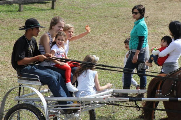 Passeio de charrete é uma das atividades da mini-fazenda  (Foto: Divulgação)