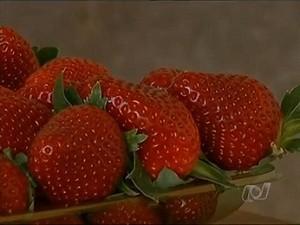 Produtor rural investe no cultivo de morangos em Goianápolis, Goiás (Foto: Reprodução / TV Anhanguera)