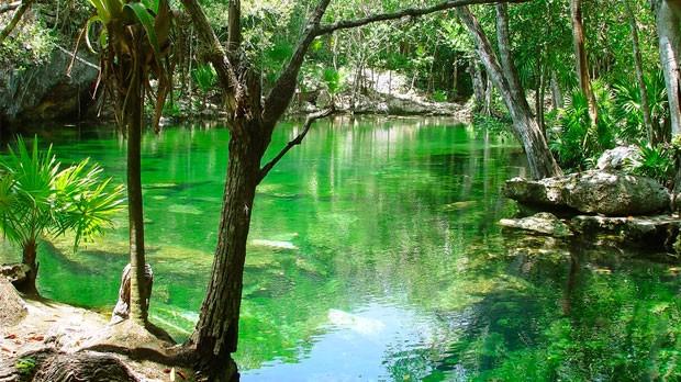 guas turquezas da Riviera Maya (Foto: Divulgao)