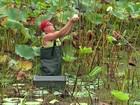 Nova geração dá continuidade à produção biodinâmica em fazenda
