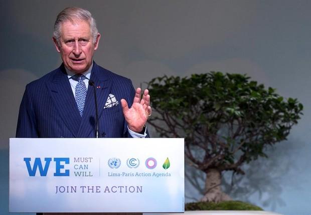 Príncipe Charles durante pronunciamento na COP-21 (Foto: Etienne Laurent/EFE)