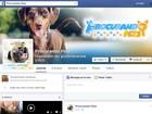 Jovem cria página para procurar pets perdidos e localiza 700 em 16 meses