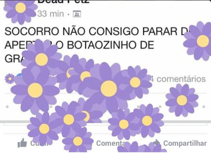 Os usuários de redes sociais amaram as florzinhas do Facebook (Foto: Felipe Alencar/TechTudo)