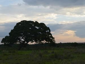 Calor ainda predomina no Cone Sul de Rondônia (Foto: Jonatas Boni/ G1)