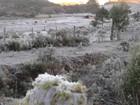 Frio gela campos e muda paisagem no interior do RS nesta sexta
