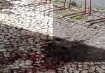 Morador de rua é morto em Caçapava (Foto: Reprodução/TV Vanguarda)