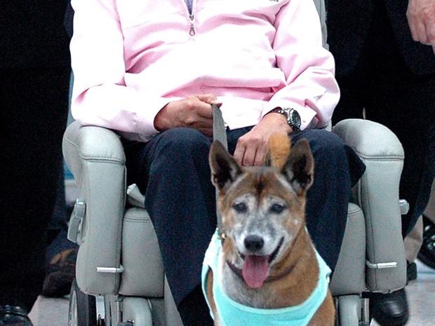Foto de fevereiro de 2010 mostra o rei tailandês Bhumibol Adulyadej com a cadela Tongdaeng. Ela tinha 17 anos e estava há muito tempo doente (Foto: AFP)
