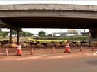 Viaduto liberado há menos de um dia na PR-445 é fechado novamente