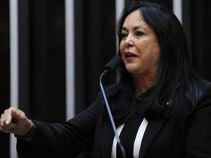 Deputada Rose de Freitas (PMDB-ES) discursa como candidata à presidência da Casa (Foto: Laycer Tomaz/ Agência Câmara)