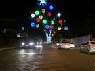 Extremo Norte do Brasil aposta em árvores típicas da região no Natal