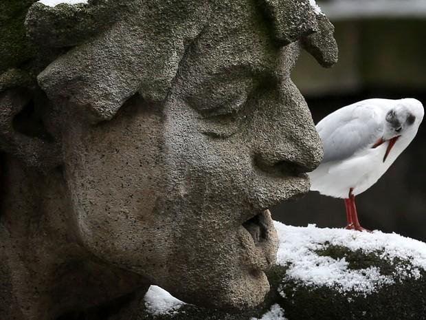Gaivota parece 'conversar' com estátua em Dusseldorf, na Alemanha. (Foto: Martin Gerten/AFP)
