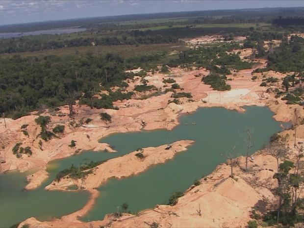 Flona Vale do Jamari (Foto: Rede Amazônica/ Reprodução)