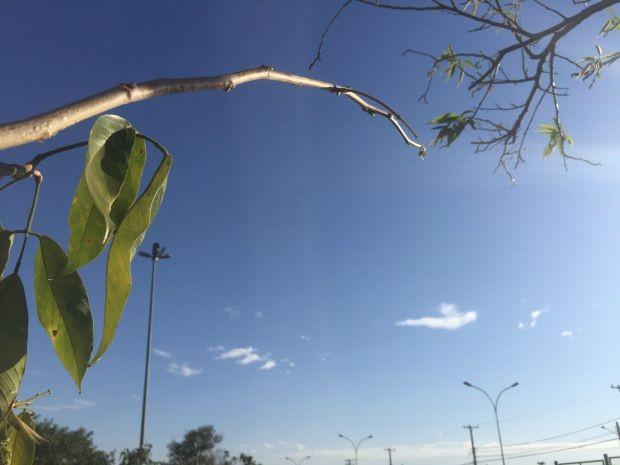 Céu de Campo Grande limpo na tarde deste sábado  (Foto: Gabriela Pavão/ G1MS)