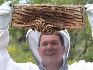 O pesquisador Paulo de Souza segura abelhas que são utilizadas em testes em laboratório da Tasmânia, na Austrália (Foto: Divulgação/Csiro- Austrália)