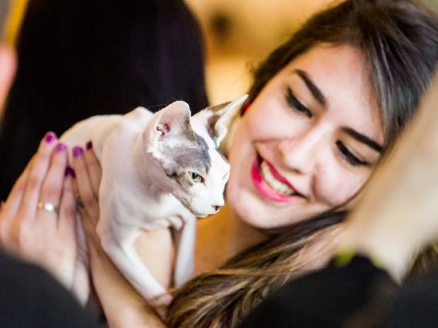 Clube Brasileiro do Gato realiza Exposição Internacional de Gatos de Raça, com 360 animais, de 23 raças, no Club Homs, em São Paulo (Foto: Carla Carniel/Estadão Conteúdo)