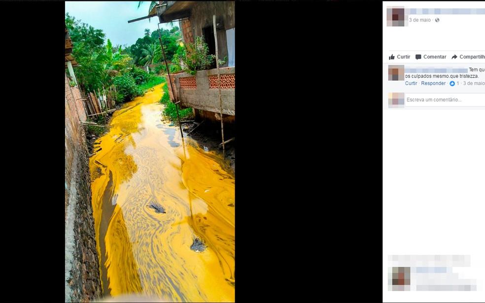 Prefeitura investiga derramamento de azeite de dendê em rio na Bahia (Foto: Reprodução/Facebook)