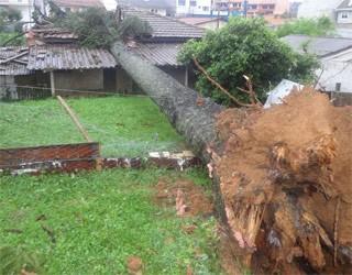 Chuvas causaram muitos danos na cidade (Foto: Tony Mattoso/RPCTV)