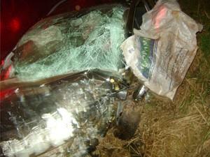 Dois homens morreram com a colisão (Foto: Polícia Rodoviária Estadual)