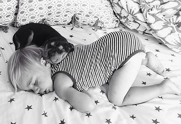 Eles não se desgrudam pra dormir. Não é uma fofura? (Foto: Divulgação/Momma's Gone City)