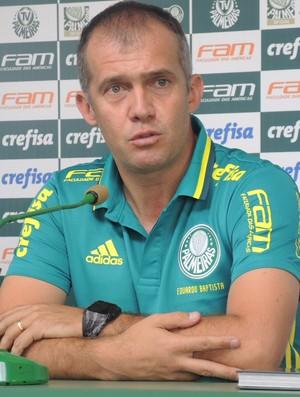 BLOG: Palmeiras e seu novo comandante Eduardo Baptista vivem momentos semelhantes