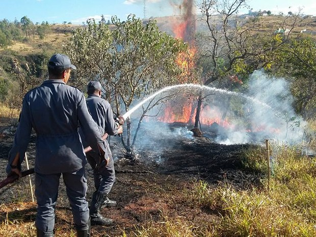 Fogo destrói vegetação em Oliveira (Foto: Marcelo Praxedes/Divulgação)
