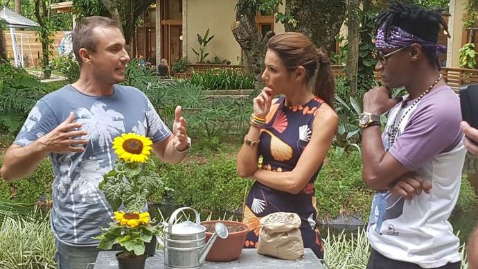 Os girassóis também tem um jeitonho especial de plantar e cuidar (Foto: Shaulla Rodrigues / Gshow)