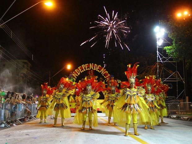 Independência do Jardim Casqueiro foi a campeã do Carnaval 2016 de Cubatão (Foto: Ale Souza/Prefeitura de Cubatão)