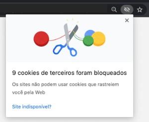 Cookies - Chrome (Foto: Globoplay)