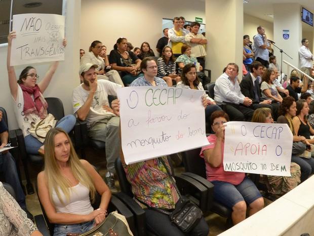 Audiência na Câmara de Piracicaba debate projeto do 'Aedes do Bem' (Foto: Fabrice Desmonts/Câmara de Piracicaba)