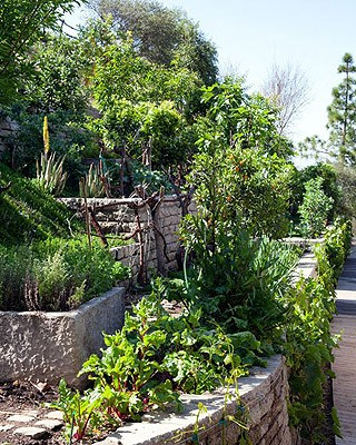 A horta de Gisele (Foto: Reprodução/Architectural Digest)