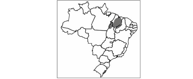 Mapa da região (Foto: Reprodução/Mackenzie)