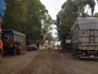 Operação da PF contra desmate no Cerrado prende uma pessoa em MT