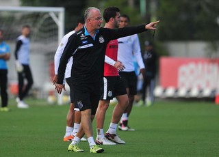 Dorival Júnior, técnico do Santos (Foto: Ivan Storti/Santos FC)