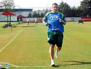 Daniel Carvalho treino Palmeiras (Foto: Diego Ribeiro / Globoesporte.com)