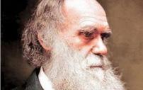 Conheça os conceitos da teoria evolucionista (UFRJ)